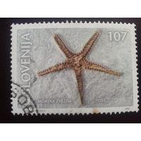 Словения 2001 морская звезда