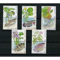 Малайзия 1999. аквариумные рыбки. 10м.