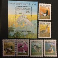 Птицы. Венгрия,1980, серия 6 марок+блок