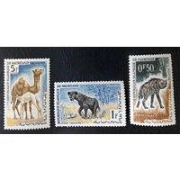 Мавритания 1963 г. Дикие животные Африки. Фауна, 3 марки. Чистые #0023-Ч1P3