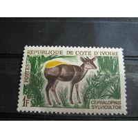 Марки - Кот-Д-Ивуар, фауна, чистая