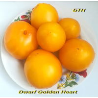 Семена томата Dwarf Golden Heart (Карлик Золотое сердце)