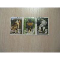 Гвинея 1998