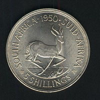 Южная Африка 5 шиллингов 1950 г. Серебро. XF+. Тираж 83.000 экз.