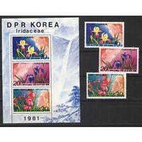 Почтовые марки КНДР, 1981г. (цветы)