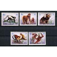 Фуджейра - 1972 - Обезьяны - [Mi. 1532-1536] - полная серия 5 марок. MNH.