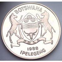 БОТСВАНА 5 пула 1988 год PROOF (серебро)
