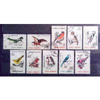 Птицы, Румыния, 1993 год, 10 марок