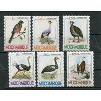 Мозамбик. Птицы. Вып.1980