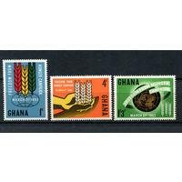 Гана - 1963 - Борьба против голода - [Mi. 138-140] - полная серия - 3 марки. MNH.