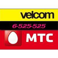 Пара номеров Велком Мтс Velcom MTS