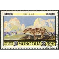 Кошки. Монголия. 1974. Снежный барс. Марка из серии. Гаш.