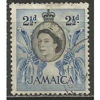 Ямайка. Королева Елизавета II. Бананы. 1956г. Mi#164.