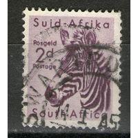 Южная Африка. Гашеная. Лот-8