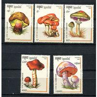 Камбоджа - 1992 - Грибы - [Mi. 1318-1322] - полная серия - 5 марок. MNH.