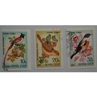 СССР.1981.певчие птицы