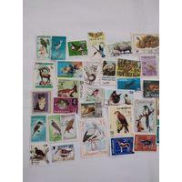 50 марок фауны
