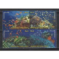 Пакистан Морская фауна 2012 год чистая полная серия из 4-х марок в квартблоке